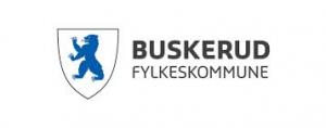 111 Buskerud fylkeskommune